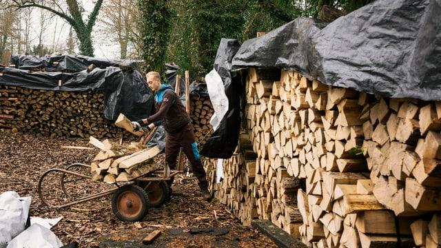 Zivi sammelt Holz.