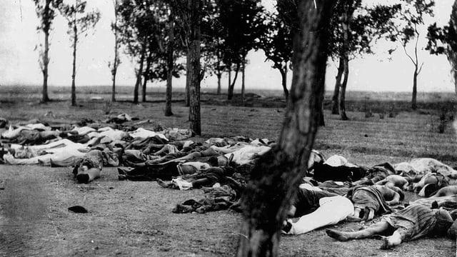 Schwarz-Weiss-Aufnahme: Menschen liegen tot auf einem Feld, auf dem ein paar Bäume wachsen.