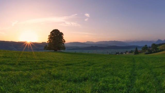 Sonnenaufgang über dem Belpberg.