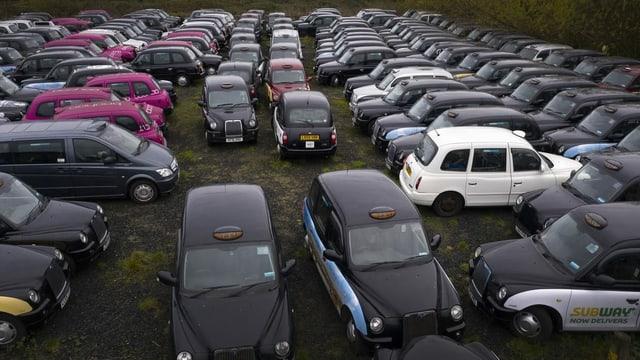Autos auf einer Wiese