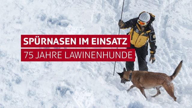 Mann mit Spürhund im Schnee