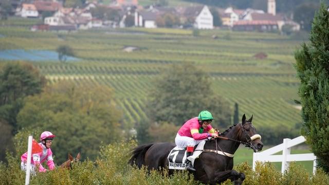 Pferderennen Maienfeld