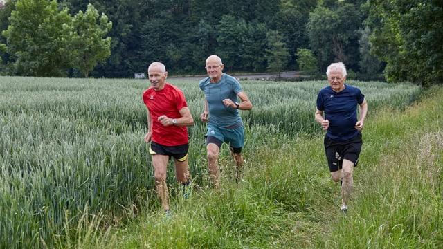 Drei ältere Männer rennen durch eine Wiese.
