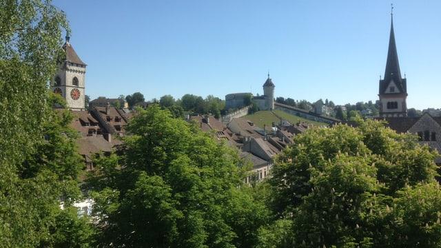 Stadtansicht von SChaffhausen mit vielen Bäumen.