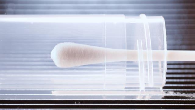 Nahaufnahme eines Wattestäbchens in einer Plastikhülle
