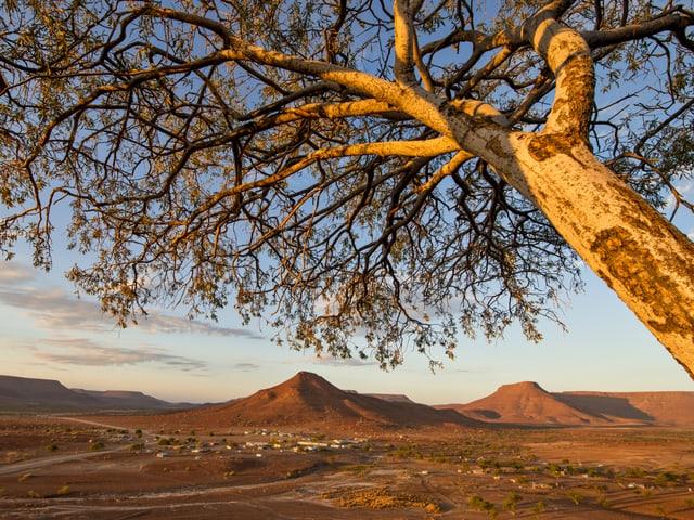 Steppe, Berge und jede Menge wilder Tiere. Für die Menschen in der namibischen Wüste ist die Natur das grösste Kapital.