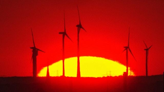 Klimafreundlich muss nicht renditefeindlich sein, sagt eine neue Studie. Aber haben die Anleger den Mut?