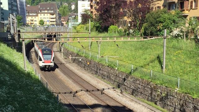 Zug auf Gleis
