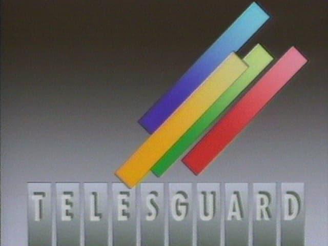 farbig Balken und ein Schriftzug Telesguard.