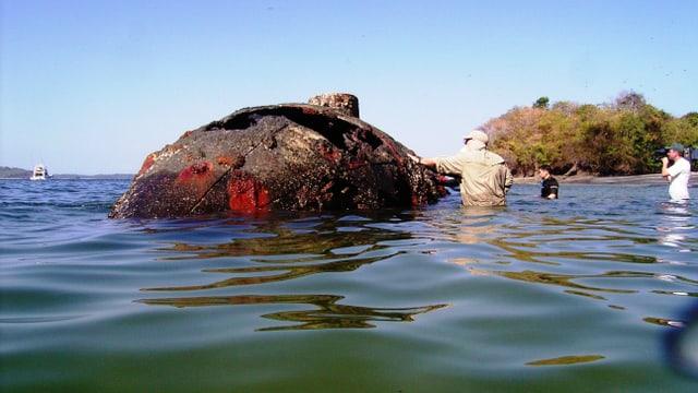 Kampf um die Ostsee: Das Wrack der Hedvig Sophia