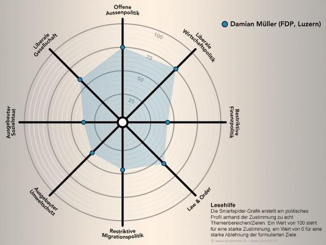Das politische Profil von Damian Müller schematisch dargestellt.