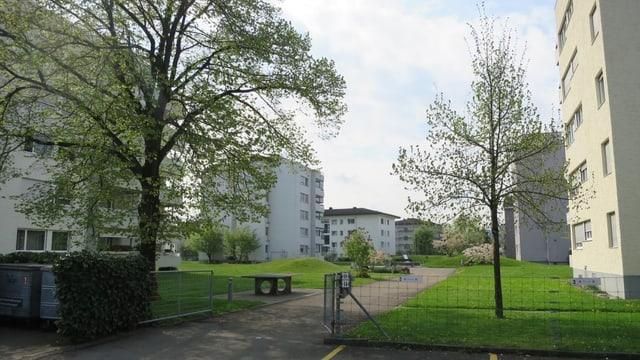 Lindenhof Wil
