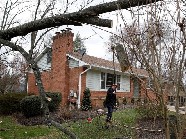 Baum vor einem Haus.