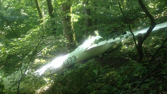 Segelflugzeug zwischen Bäumen im Wald.