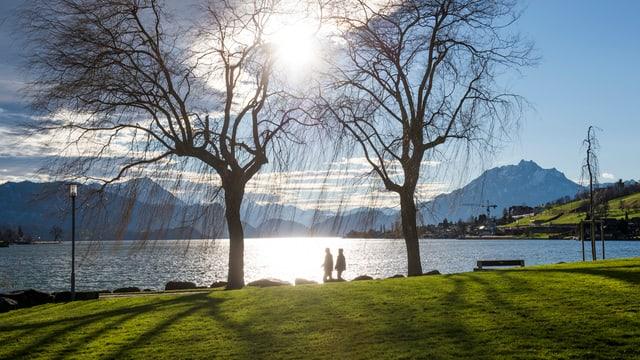 See und Ufer in Küssnacht.