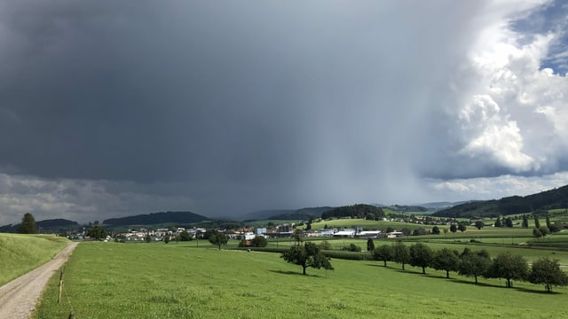 Dunkle Quellwolke mit Virgastreifen (Regen) im westlichen Kanton Thurgau.