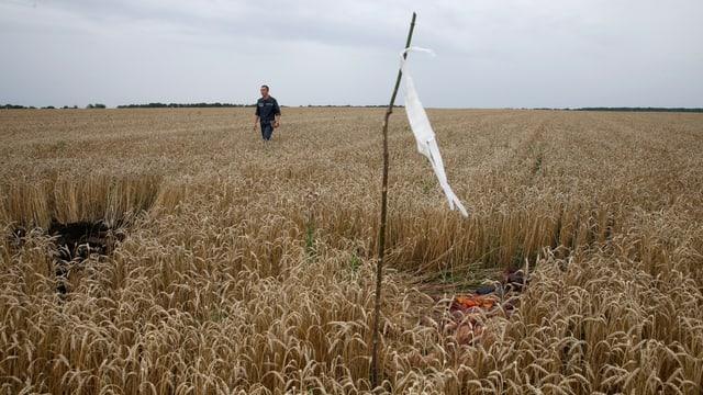 Absturzstelle eines Flugzeuges in einem Kornfeld in der Ukraine.