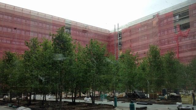 Bäume, dahinter Baustelle mit rot eingerüstetem Gebäude
