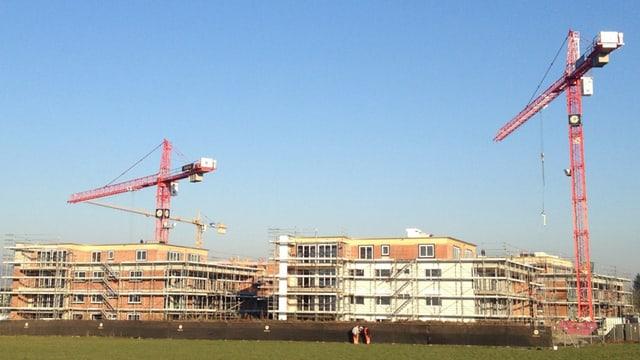 Neubauten in Staufen