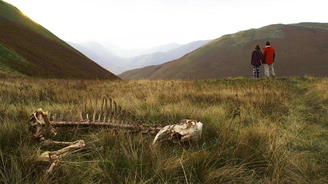 Zwei Menschen stehen in einer öden Graslandschaft und blicken in die Ferne, im Vordergrund liegen Tierknochen.