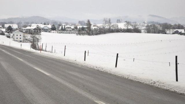 Eine Wiese im Schnee.