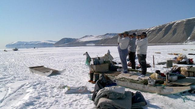 Neben einem Schlitten auf Schnee stehen drei Männer und blicken mit einem Fernglas in die gleiche Richtung.