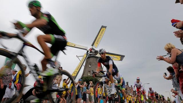 Der Tour-Tross fährt an Windmühlen vorbei.
