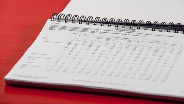 Der Ausschnitt zeigt den Datensatz ausgedruckt und als gebundenes Dokument, hierbei wurde eine beliebige Seite aufgeschlagen.