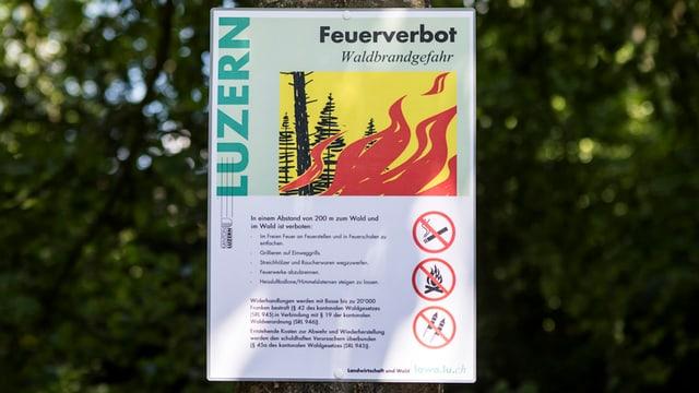 Eine Tafel im Wald mit dem Feuerverbot des Kantons Luzern.
