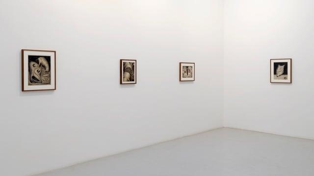 Wand mit Bildern