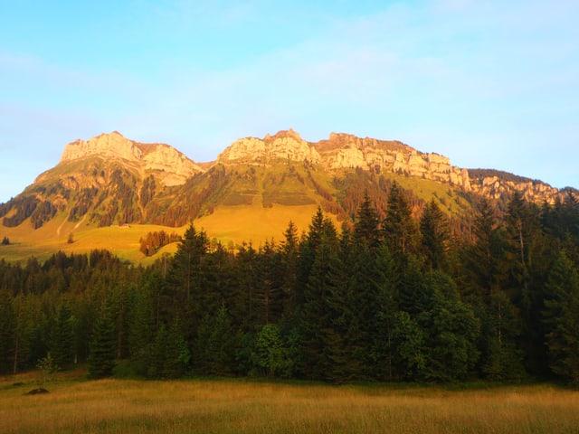 Der Hohgant Westgipfel und das Trogenhorn vom Rotmoos, Eriz her