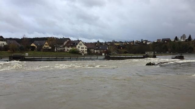 Fluss mit braunem Wasser.