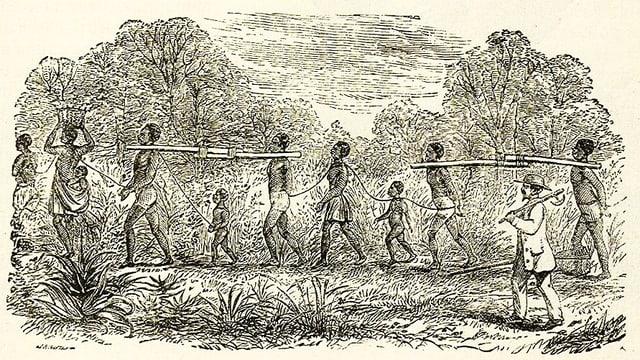Hinter einem Sklaventreiber laufen zusammengebundene Sklaven hintereinander her.