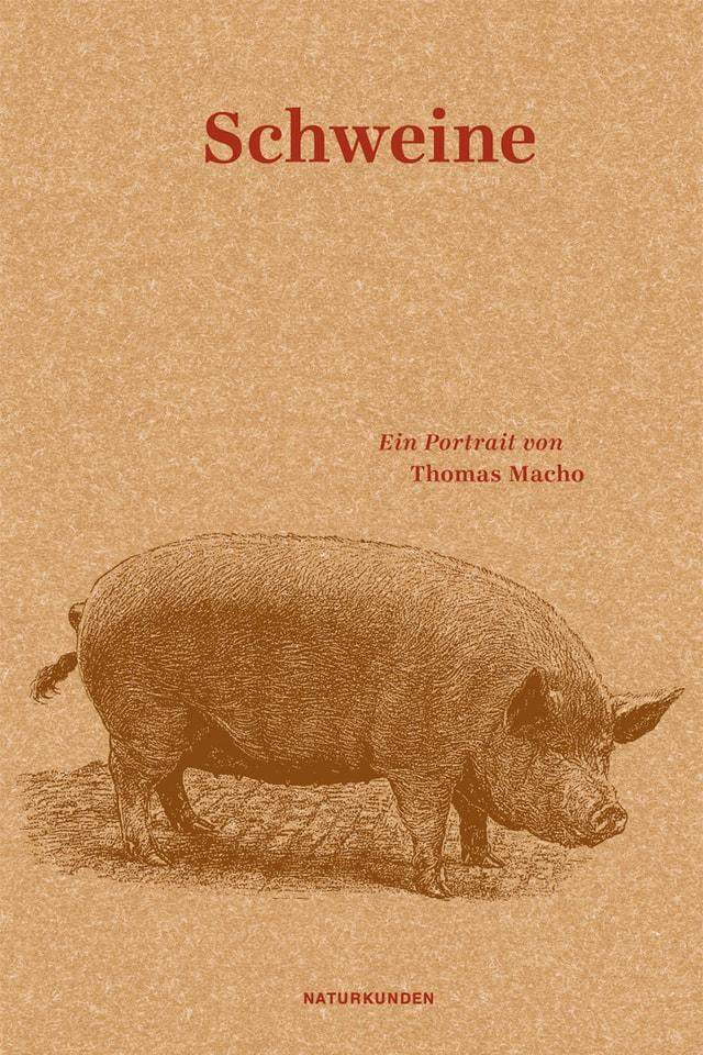 """Cover des Buches """"Schweine"""" von Thomas Macho"""