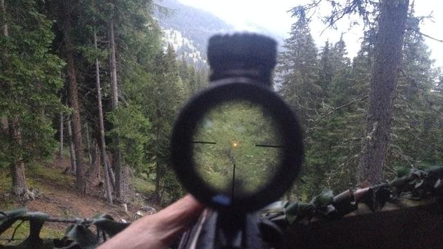 La vista tras ilperspectiv dal schluppet.