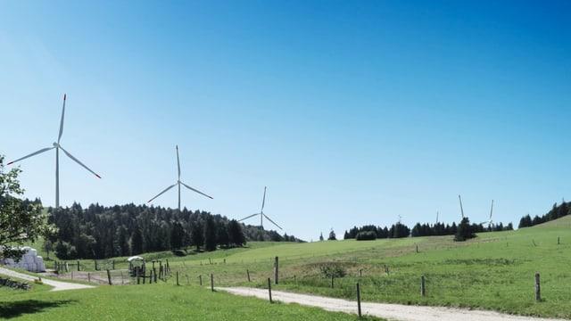 Visualisierung des Windparkprojekts
