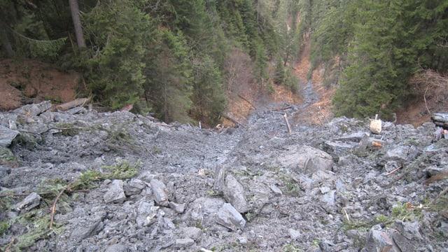La glera en la Val Parghera.