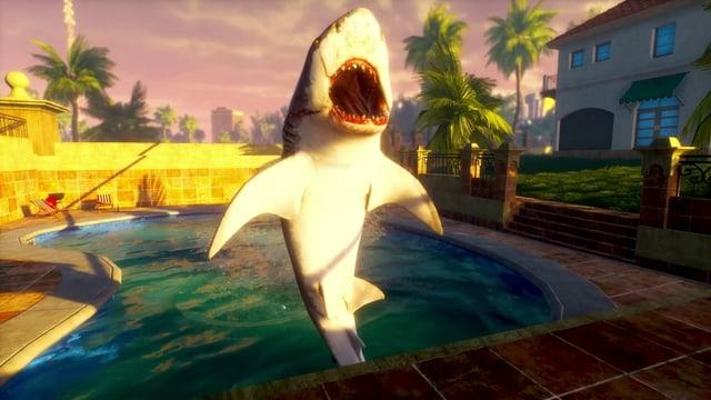 Ein Hai im Pool einer Villa. Ein skuriles Bild.