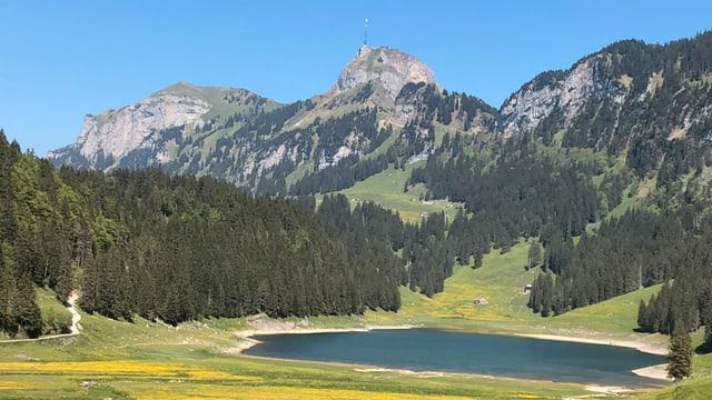 Apere Landschaft am Sämtisersee.