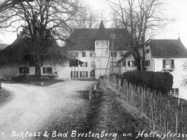 Schloss in schwarzweiss