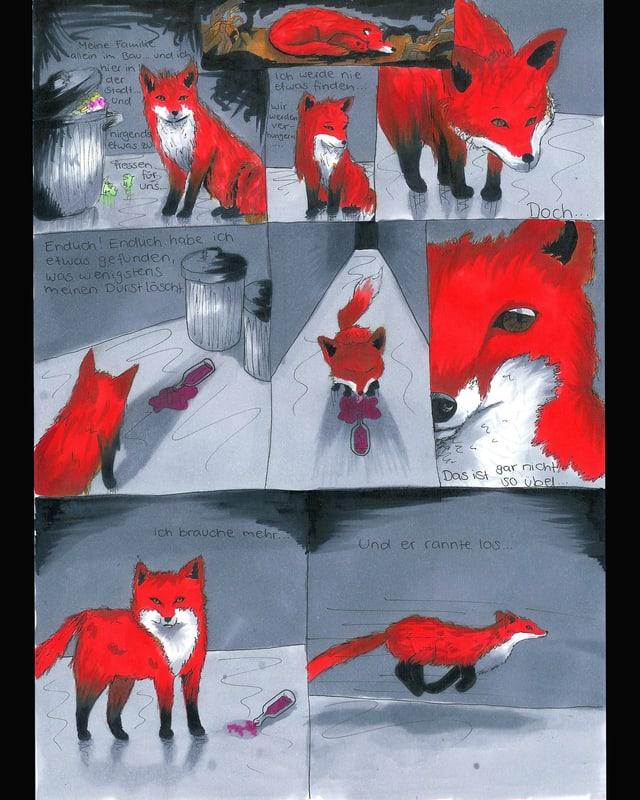 Fuchszeichnungen