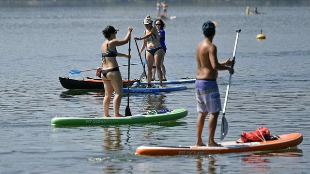 Stand-Up-Paddler auf dem Greifensee