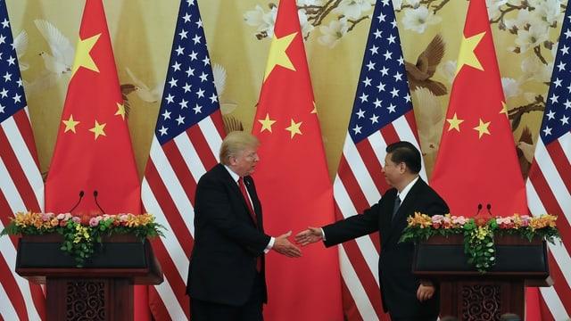 Archivbild: Trump und Xi reichen sich die Hand.