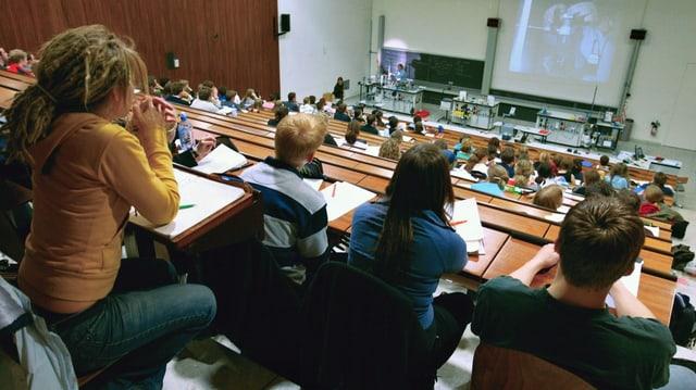 auditori dad in'universitad