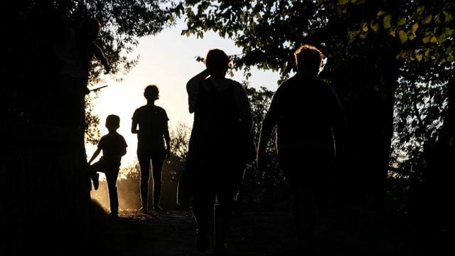 Silhouette mehrerer Menschen im Wald.