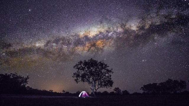 Ein kleines Zelt unter einem Baum unter einem nächtlichen Sternenhimmel.
