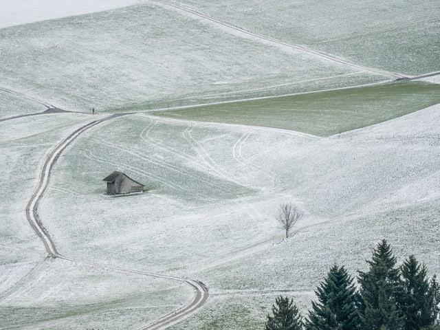 Verschneite Wiese.
