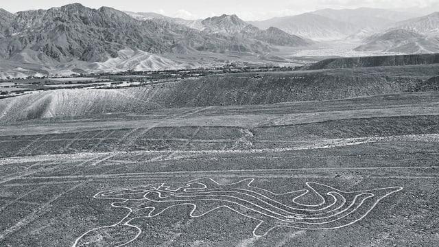 Schwarzweissbild einer Gebirgslandschaft, in der Ein riesieges Tier auf den Boden gezeichnet wurde