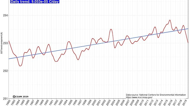 Ein diagramm: die  Kurve stellt den mittlerenanstieg der Meeresoberflächentemperatur dar.