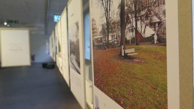 Ausstellung in der Stadtgärtnerei Zürich